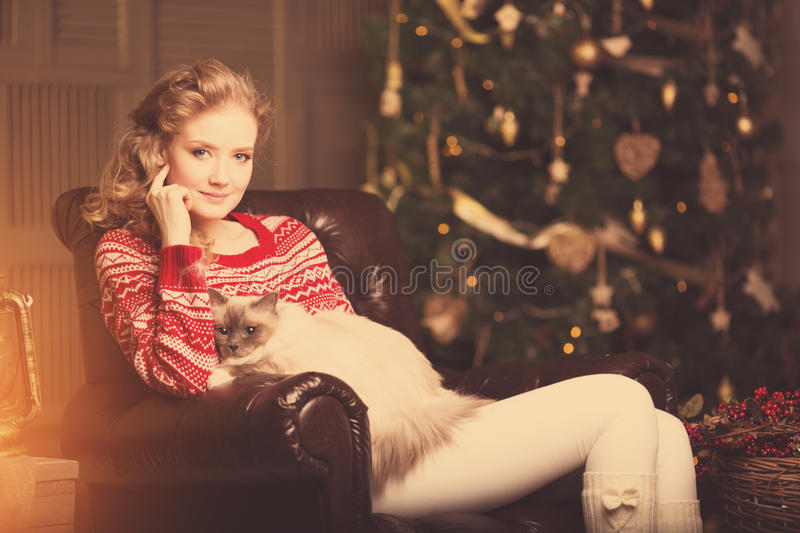 Christmas party, winter holidays woman with cat. New year girl. Christmas tree in interior background stock image