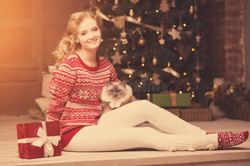 Christmas party, winter holidays woman with cat. New year girl. stock images