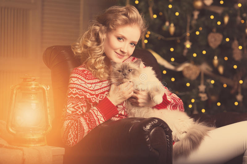 Christmas party, winter holidays woman with cat. New year girl. Christmas tree in interior background stock images