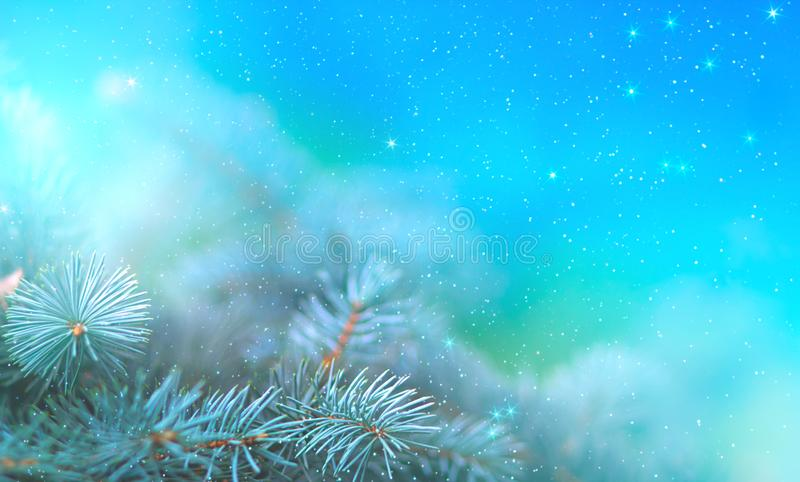 Christmas pine branch in the rays of light close up, blue background with reflections of stars and beautiful bokeh of lanterns. stock illustration