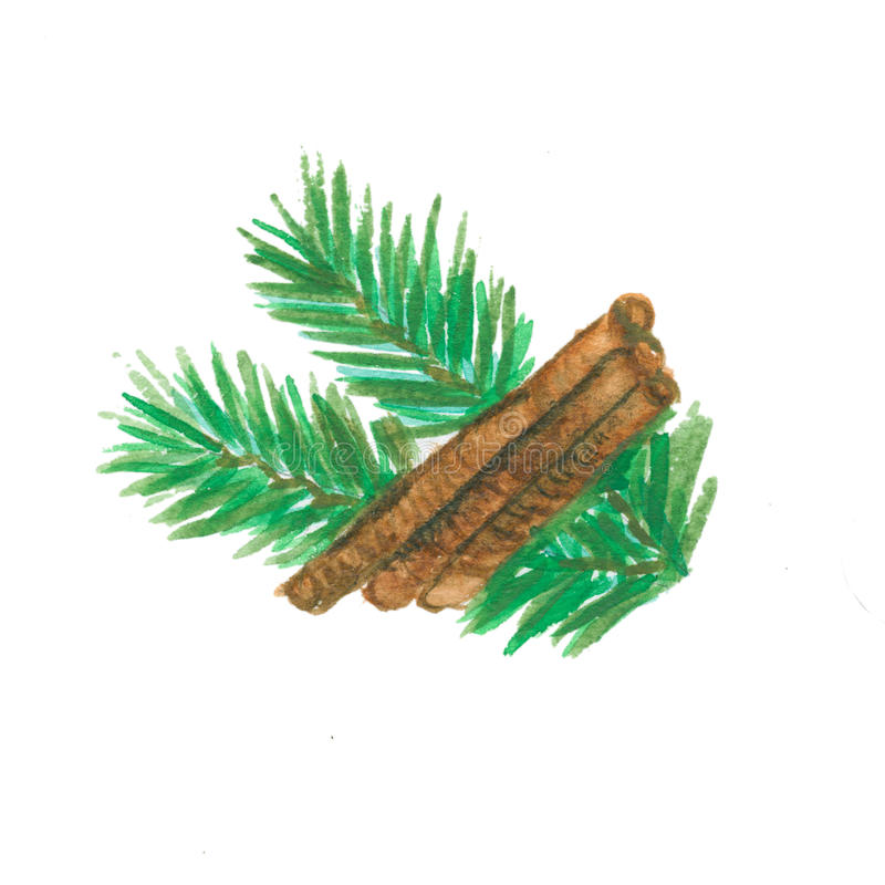 Christmas Pine Twigs with cinnamon royalty free stock image