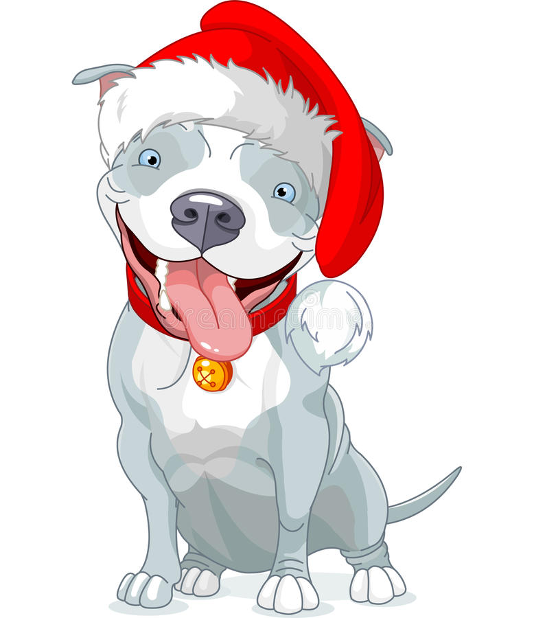 Christmas Pit Bull Dog Stock Photography - Image: 35394962