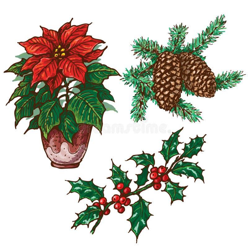 Christmas Plants Set royalty free illustration