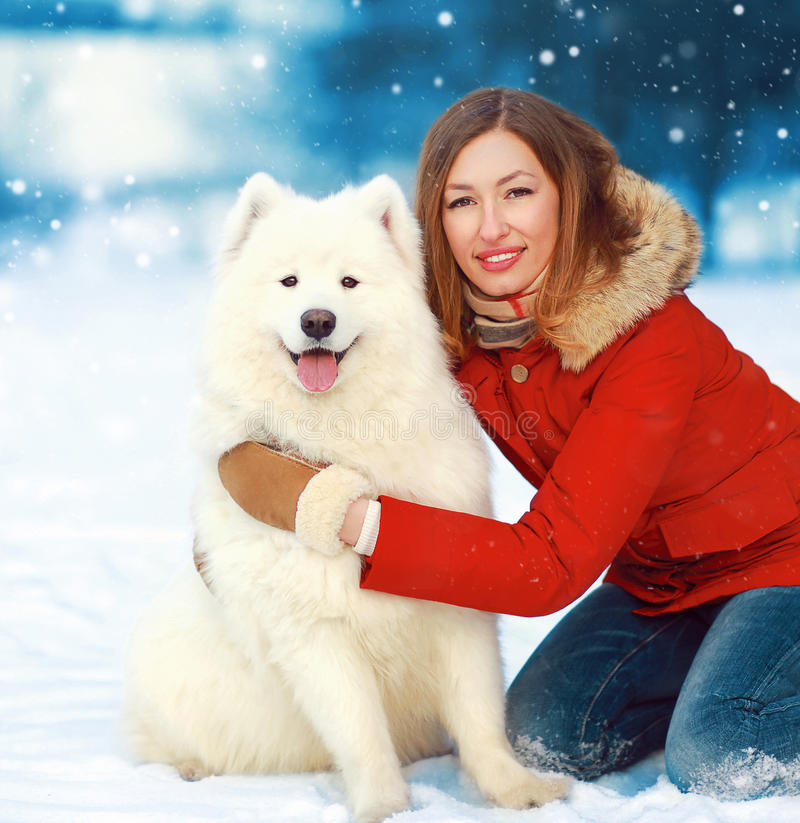 Christmas portrait happy smiling woman with white Samoyed dog on snow in winter day royalty free stock photo