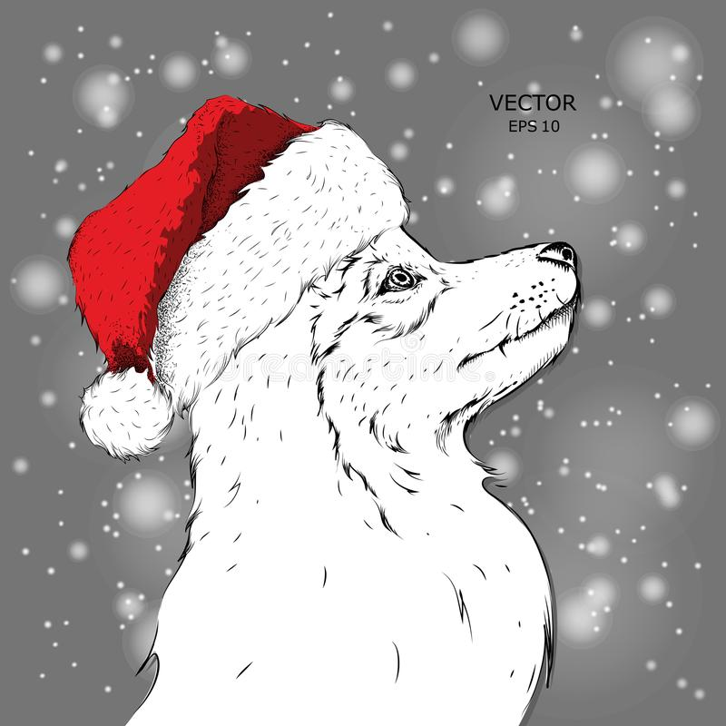 The christmas poster with the image husky portrait in Santa`s hat. Hand draw vector illustration. royalty free illustration