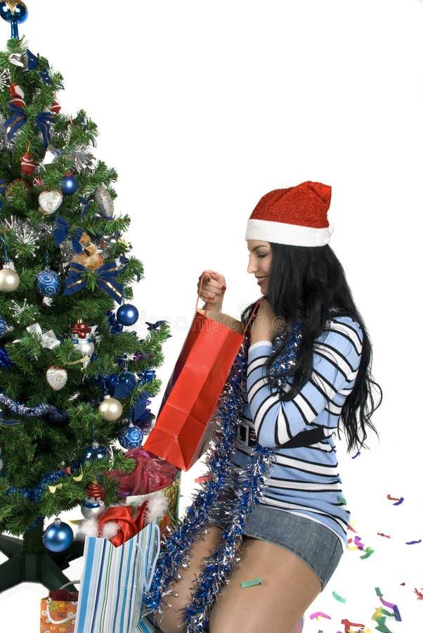 Download Christmas present stock photo. Image of beautiful, garland - 7139328