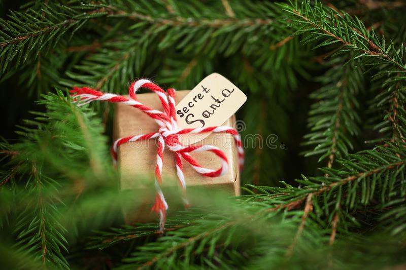 Christmas present or box for secret santa on christmas tree branch background stock images