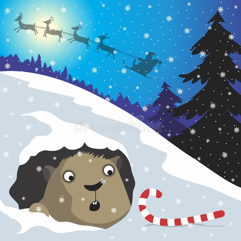 Christmas present. Santa left a gift for the groundhog. Vector format