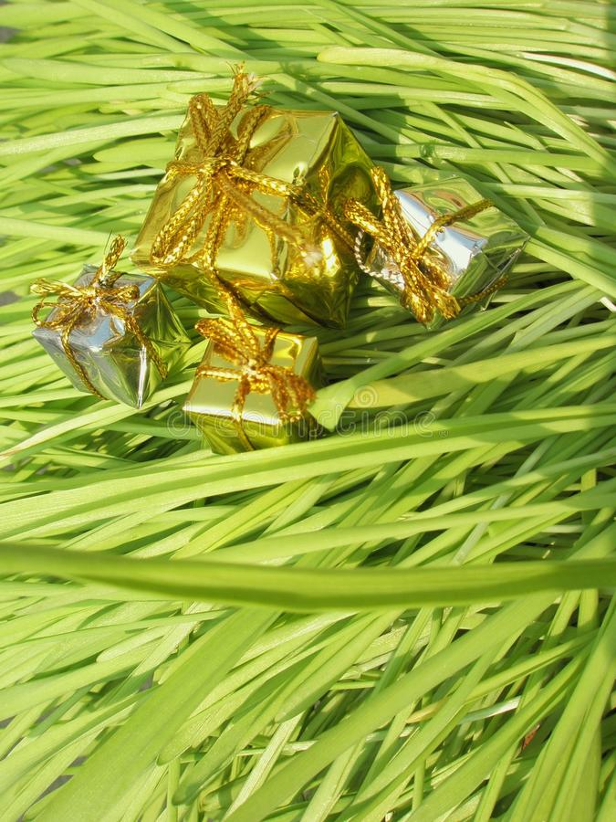 Christmas Presents On Grass Royalty Free Stock Images