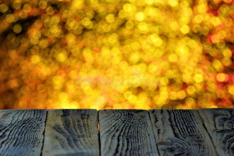 Christmas rainbow holiday lights bokeh background. On a woody background with a textured pattern of natural structure of unique royalty free stock photo