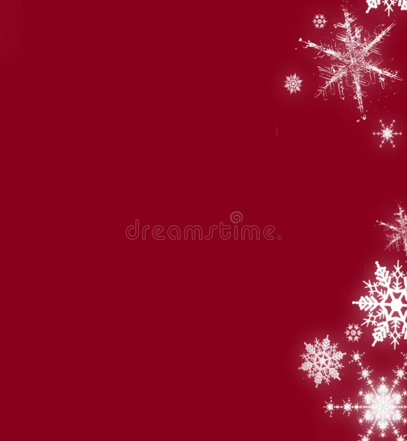 Christmas red background with snowflakes card vector illustration