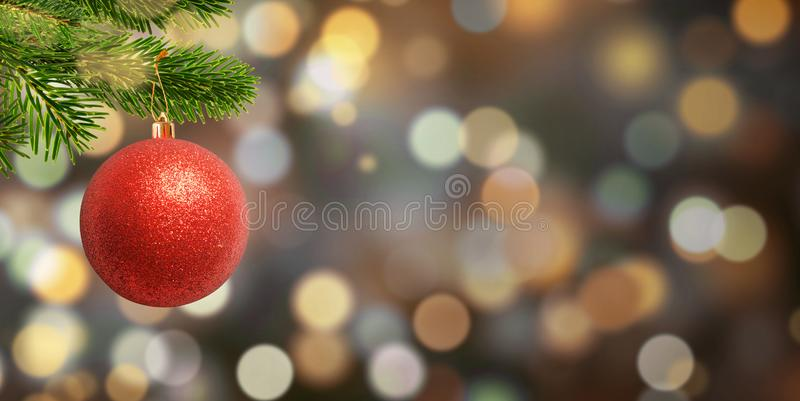 Christmas red ball on the branch. Free space for Christmas, New Year greetings text. Bokeh background stock photography