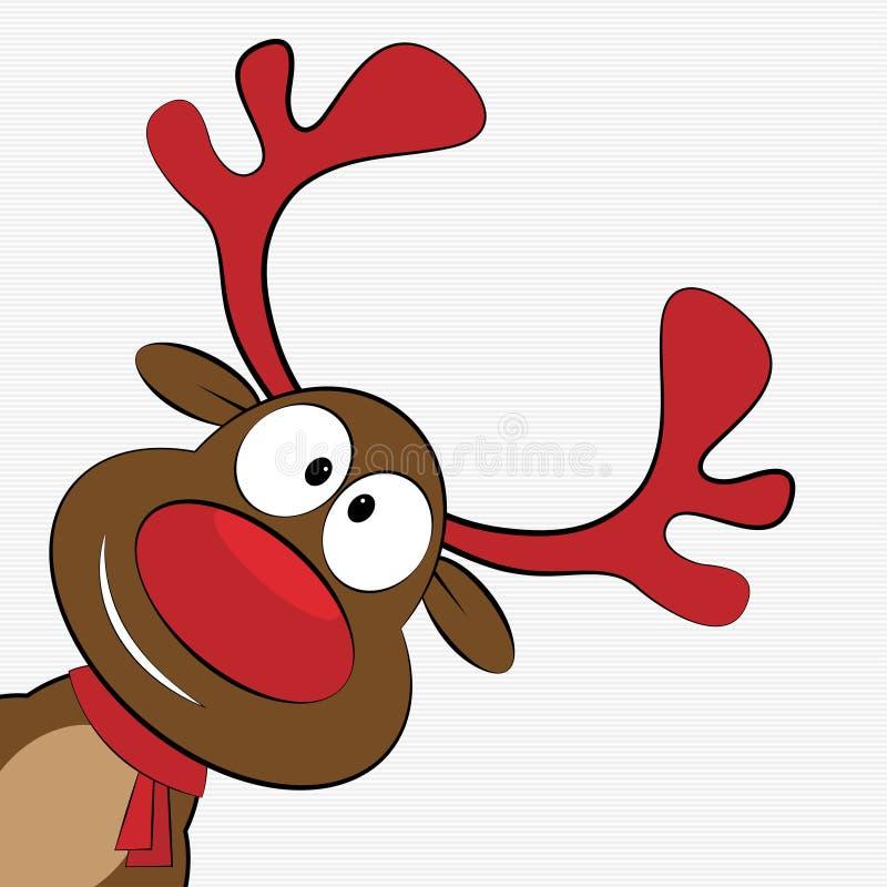Christmas reindeer. Vector illustration of cute cartoon Christmas reindeer