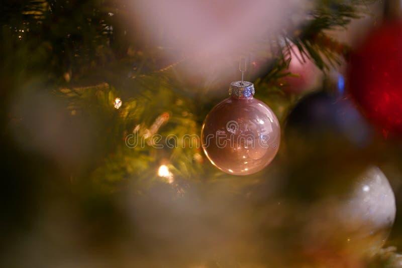 Christmas Rose Ball Detail stock image