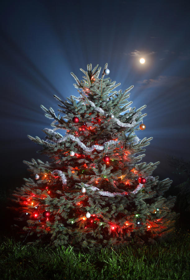 Download Christmas scenic photo stock photo. Image of glowing - 16170582