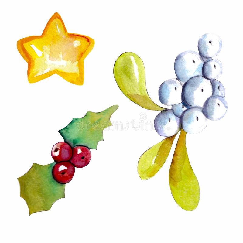 Christmas set with winter berries and a star stock image