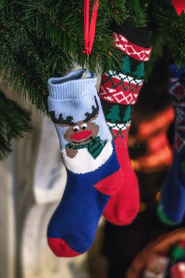 Christmas socks hanging in a Christmas tree royalty free stock photos