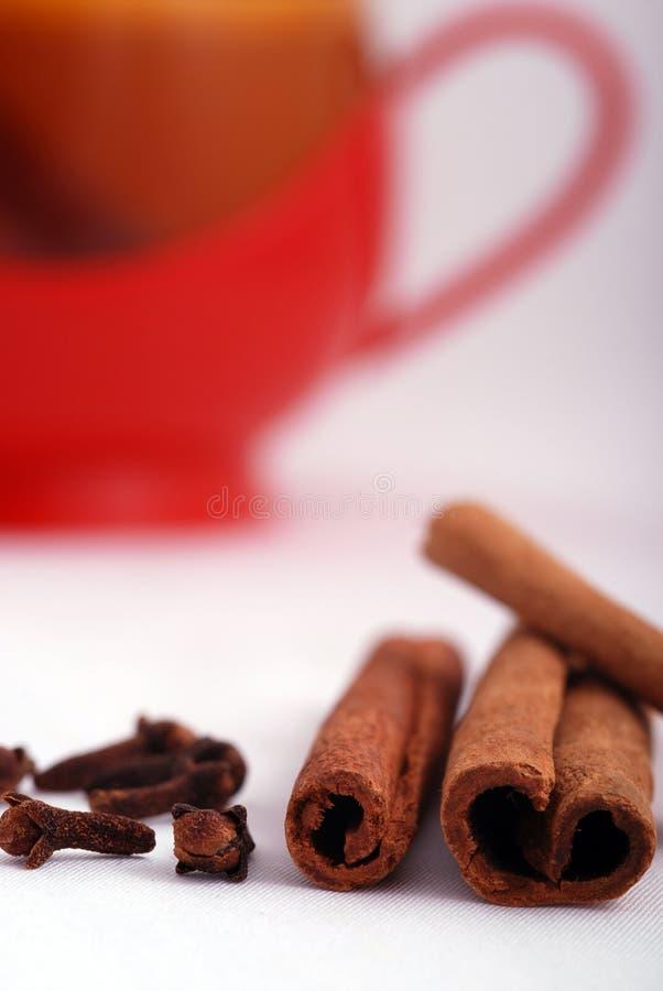 christmas spices στοκ εικόνες