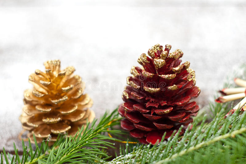 Christmas spruce branches and cones stock image