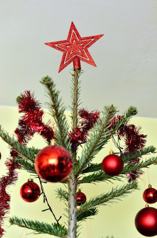 Christmas Star on top of the Christmas Tree stock photos