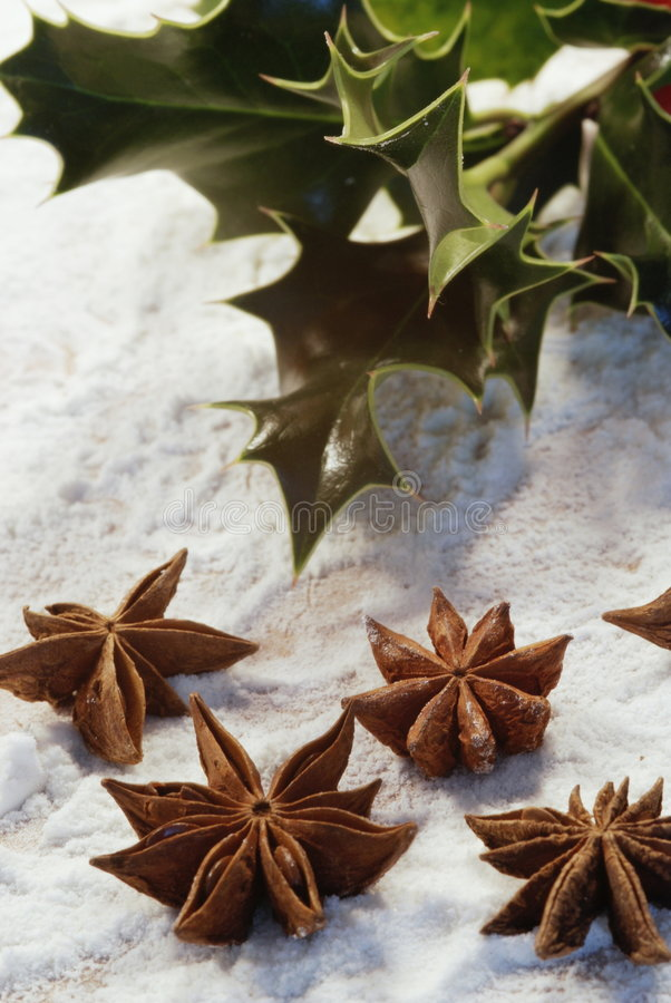 Free Christmas Still-life Royalty Free Stock Images - 3344659