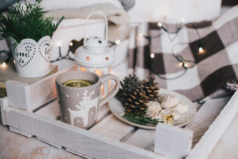 Christmas still life with tea, lights, cones and cookies stock photo