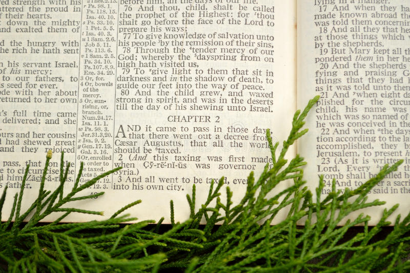Christmas story, with greenery. Open Bible at the Gospel of Luke, chapter 2. The Christmas story with cedar greenery around it royalty free stock photography