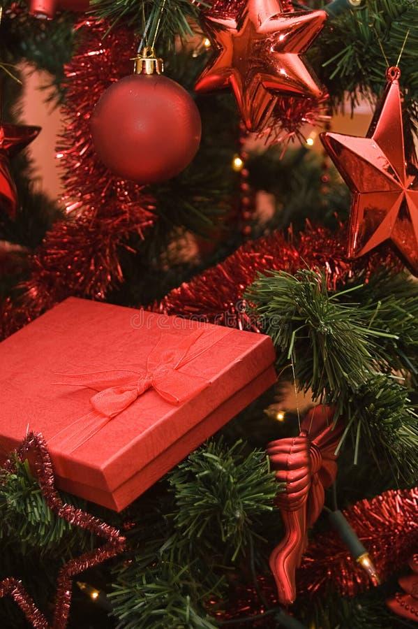Free Christmas Time Stock Photo - 10156070