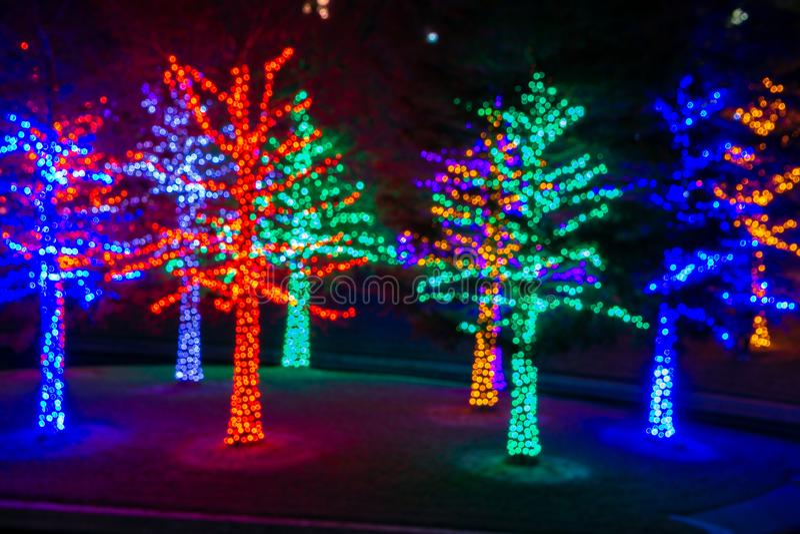Christmas Lights Sparkle at Vitruvian Park in Addison Texas. Christmas time in Addison Texas as lights fill the trees at Vitruvian Park royalty free stock photos
