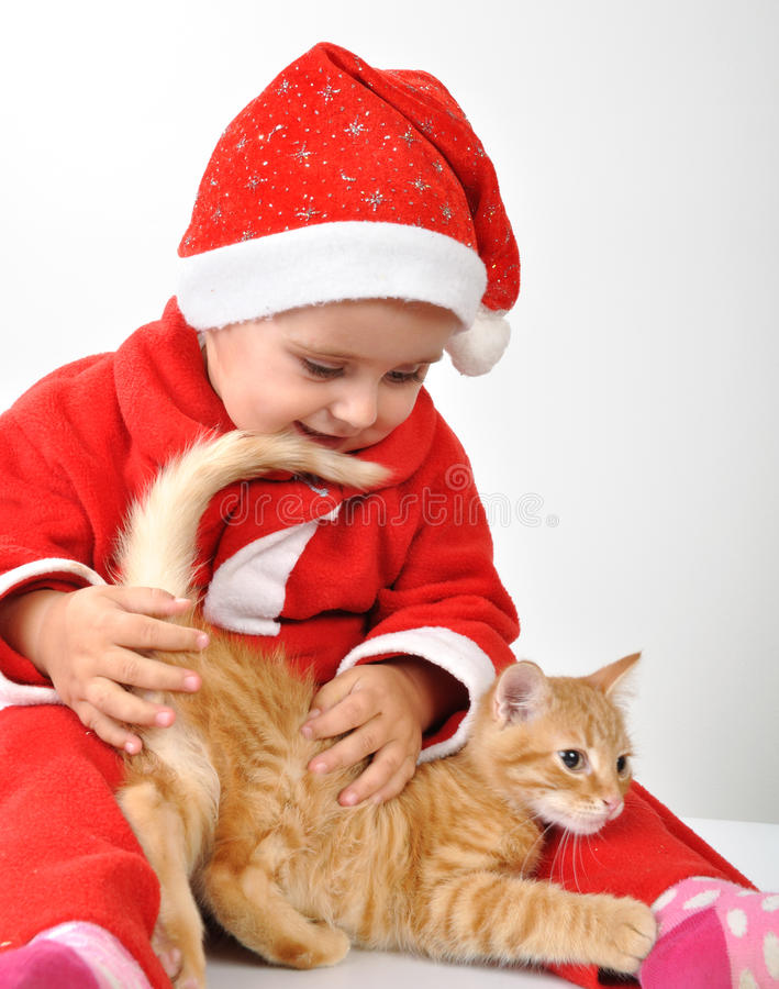 Christmas toddler child plays with a cat royalty free stock photos