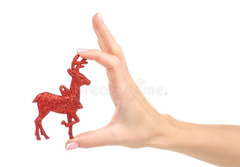 Christmas toy red deer in hand. On a white background. Isolation stock image