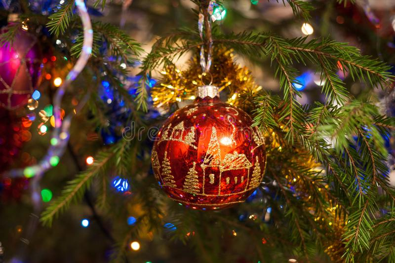 Christmas toy red glass ball, painted with gold, hangs on the fir tree. stock photo