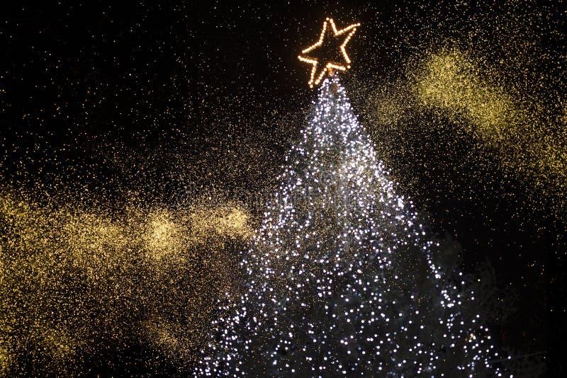 Download Christmas tree stock photo. Image of saintly, region - 10128220