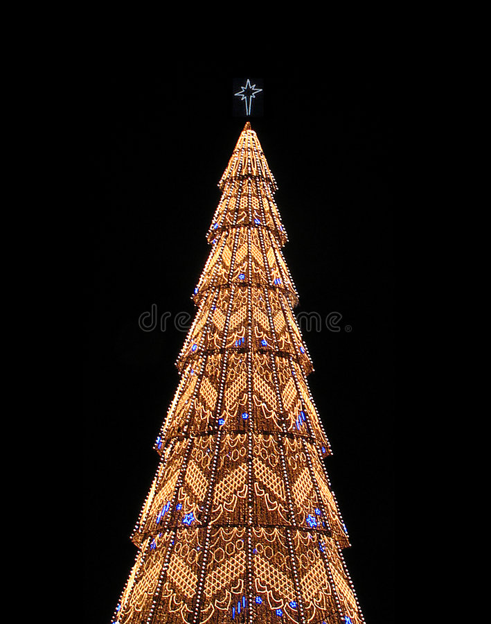 Download Christmas tree stock photo. Image of family, holidays, portugal - 114390