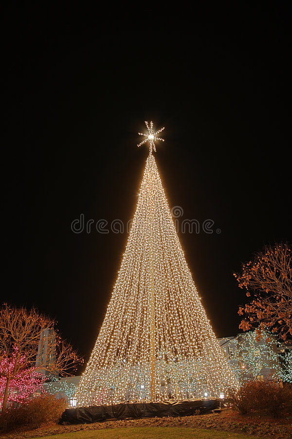 Christmas tree. A christmas tree all lit up near temple square in salt lake city stock images