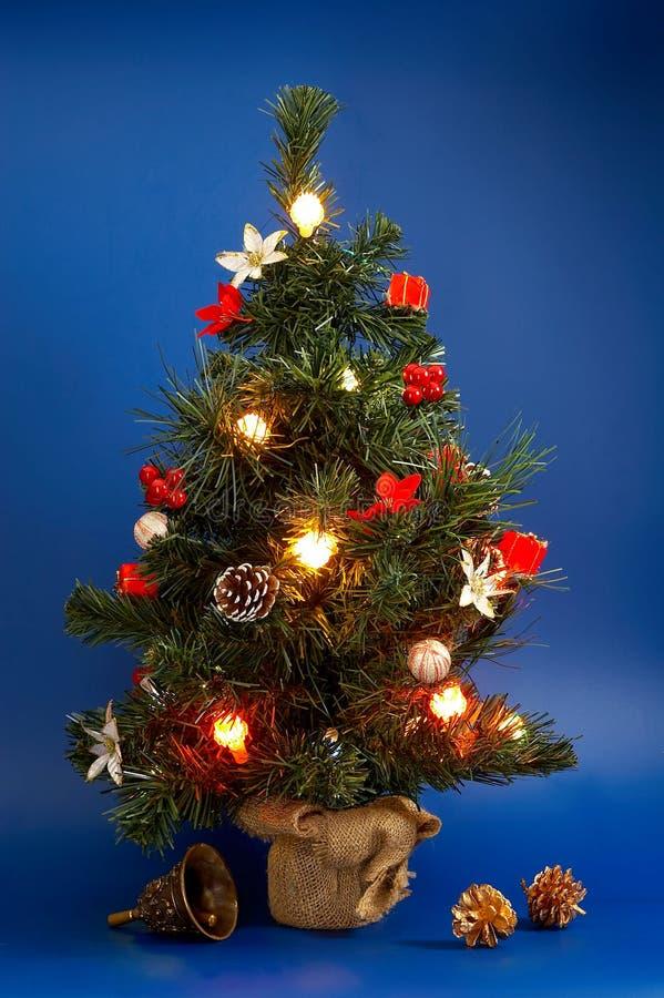 Download Christmas tree stock photo. Image of holiday, needle, flora - 1612580
