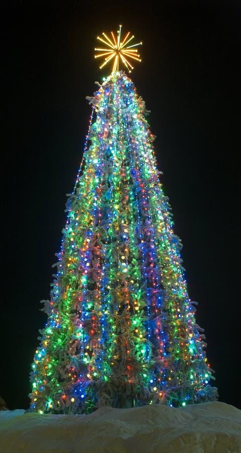 Free Christmas Tree Stock Photos - 17098833