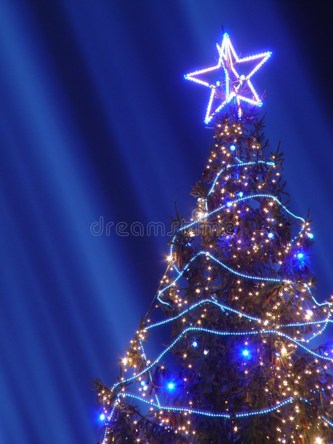 Download Christmas tree stock photo. Image of design, religious - 1712768