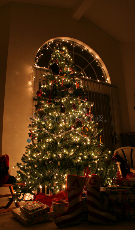 Free Christmas Tree Royalty Free Stock Images - 21632129
