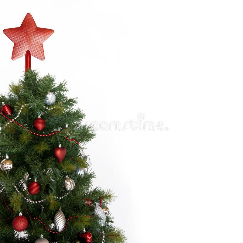 Download Christmas Tree Stock Photos - Image: 22365943