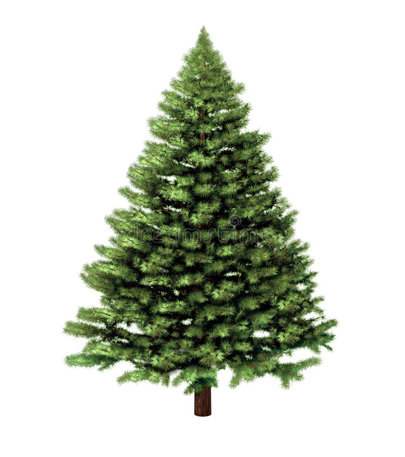 Free Christmas Tree Royalty Free Stock Photography - 26592327