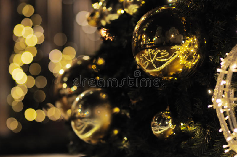 Christmas tree. Close up christmas tree outdoor royalty free stock images