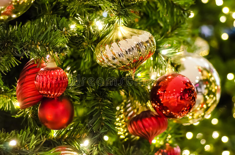 Download Christmas Tree stock photo. Image of color, evergreen - 27800410