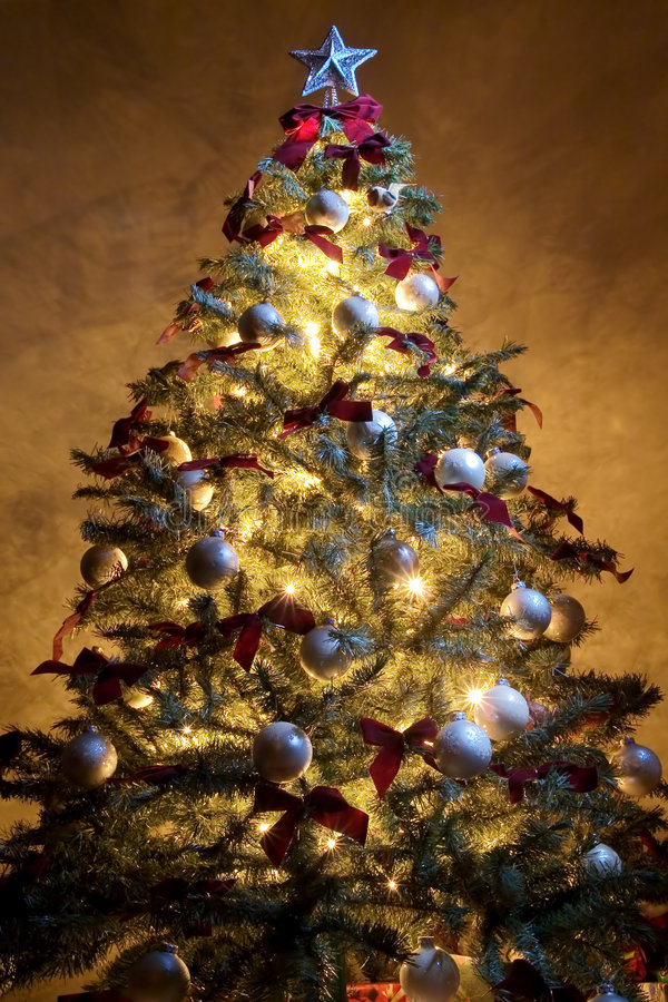 Free Christmas Tree 3 Royalty Free Stock Photography - 1604197
