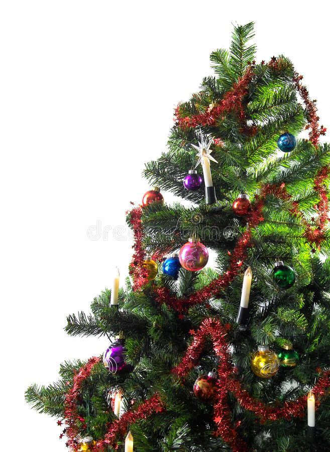 Download Christmas tree stock photo. Image of merry, green, magic - 337310