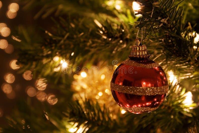 Download Christmas tree στοκ εικόνα. εικόνα από λεπτομέρεια, δέντρο - 377809