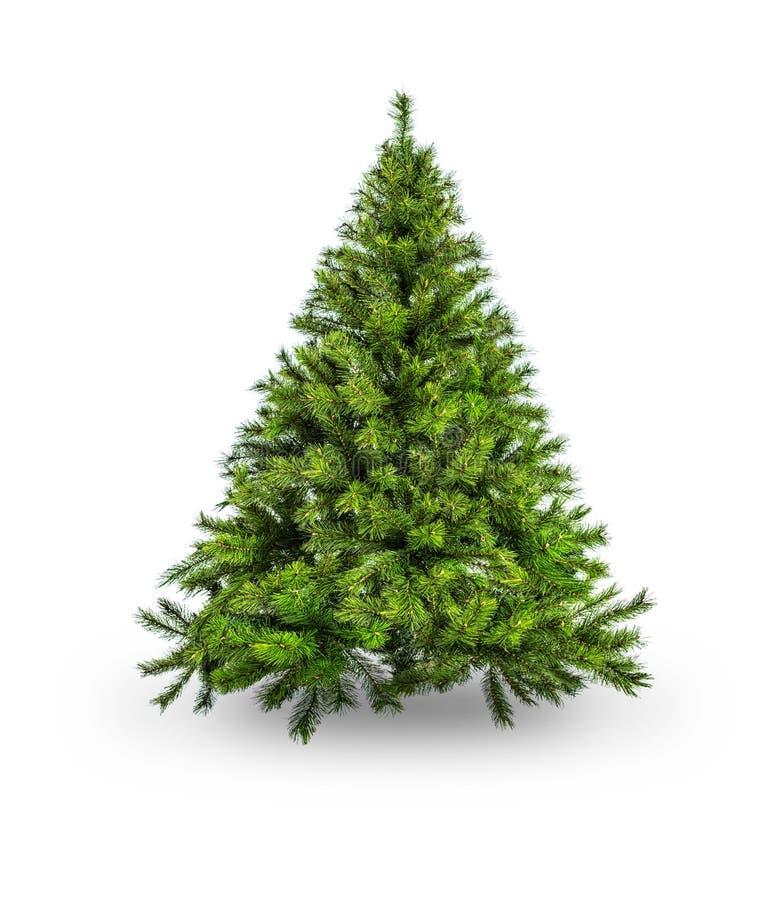 Free Christmas Tree Royalty Free Stock Photo - 44597235
