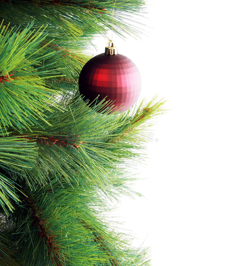 Free Christmas Tree Stock Images - 6167434
