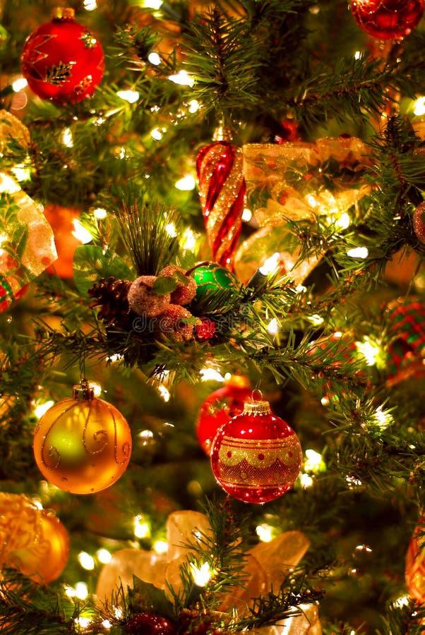 Free Christmas Tree Background Stock Image - 3188911