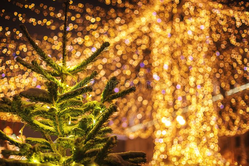 Christmas tree on the background of large blurred lights garlands. Journey to Christmas royalty free stock photography